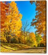 On A Country Road 6 Canvas Print