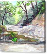 On A Mountain River Canvas Print