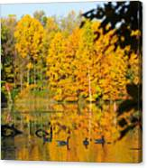 On Golden Pond 2 Canvas Print