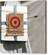 On Target Canvas Print