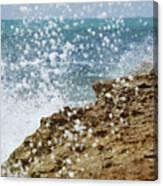 On The Edge Blowing Rocks Preserve Jupiter Island Florida Canvas Print