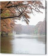On The Frio River Canvas Print