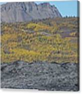 On The Matanuska Glacier Canvas Print
