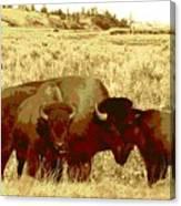 On The Move ... Montana Art Photo Canvas Print