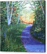 On The Path Canvas Print