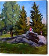 On The Rocks In Central Park Canvas Print