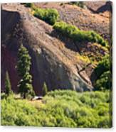 On The Slopes Of Mt. Lassen Canvas Print