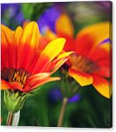 On The Sunny Side... Canvas Print