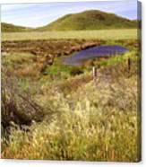 On The Way To Abbotts Lagoon Canvas Print
