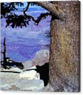 On The West Rim Of The Grand Canyon Canvas Print
