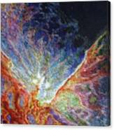 On The Wings Of A Dove Canvas Print