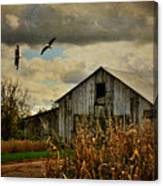 On The Wings Of Change Canvas Print