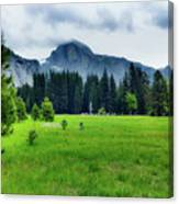 On The Yosemite Valley Floor Canvas Print