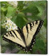 Once There Was A Butterfly Canvas Print