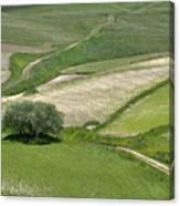 Parko Nazionale Dei Monti Sibillini, Italy 8 Canvas Print