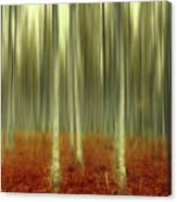 One Day Like This Canvas Print