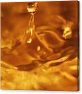 One Drop In The Puddle Canvas Print
