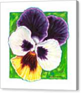 One Pansy For Marti Canvas Print