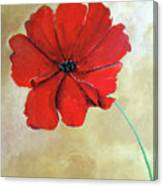 One Poppy Canvas Print