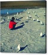 One With The Gulls Canvas Print