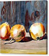 Onions In The Sun Canvas Print