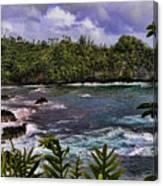Onomea Bay Hawaii Canvas Print