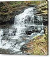 Onondaga 6 - Ricketts Glen Canvas Print