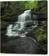 Onondaga Falls 2 Canvas Print