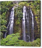 Opaekaa Falls - Kauai Canvas Print