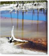 Opalescent Pool Yellowstone Np Canvas Print