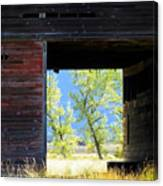 Open Door Canvas Print