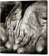 Two Old Hands Canvas Print