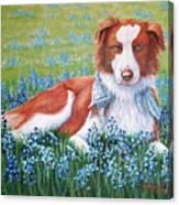 Opie Canvas Print