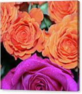 Orange And White With Pink Tip Roses Canvas Print
