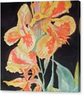 Orange And Yellow Canna Lily On Black Canvas Print