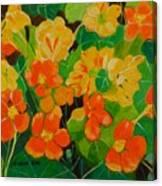 Orange And Yellow Days Canvas Print