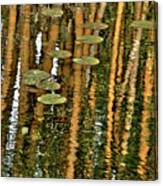 Orange Bamboo Abstract, Reflection On Water Canvas Print