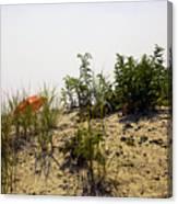 Orange Beach Umbrella  Canvas Print