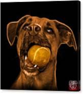 Orange Boxer Mix Dog Art - 8173 - Bb Canvas Print