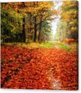 Orange Carpet Canvas Print