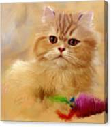 Orange Cat Canvas Print
