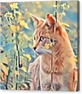 Orange Cat In Field Of Yellow Flowers Canvas Print