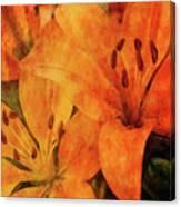 Orange Cluster 9225 Idp_2 Canvas Print