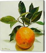 Orange cueillie Canvas Print