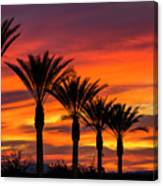 Orange Dream Palm Sunset  Canvas Print