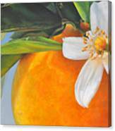 Orange En Fleurs Canvas Print