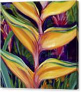 Orange Heliconia Canvas Print