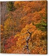 Orange Hill Canvas Print
