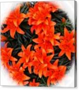 Orange Lilies Vignette Canvas Print