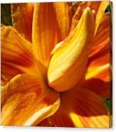 Orange Lily Flower Art Print Summer Lilies Baslee Canvas Print